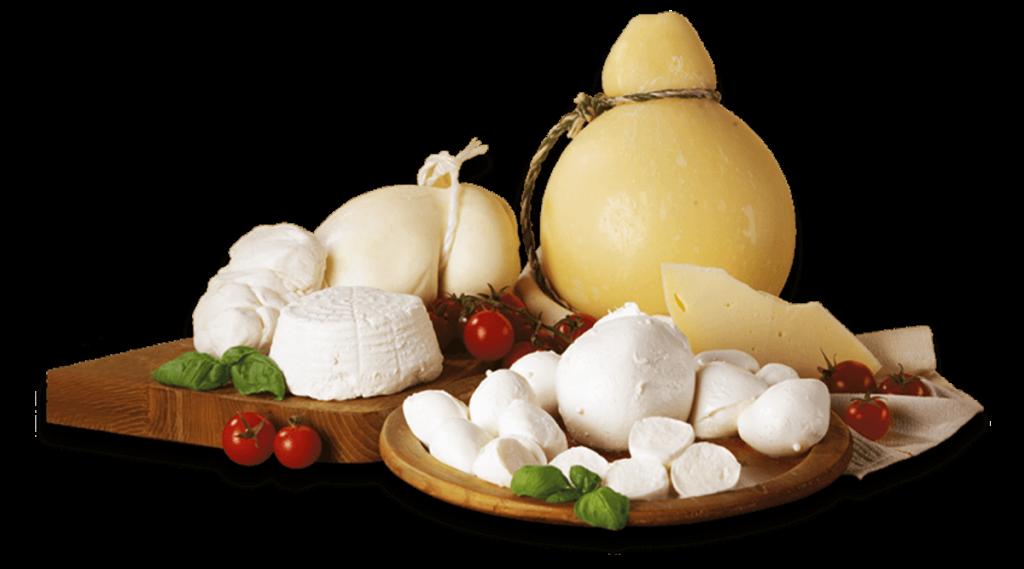 latticini-formaggi123